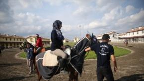 """Suruç'un şampiyon atlarına """"akademik"""" dokunuş"""