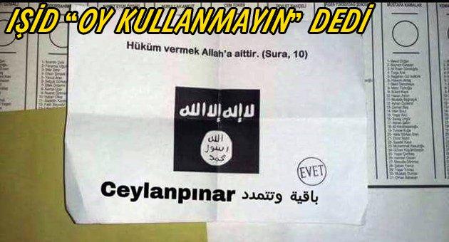 Ceylanpınar'da IŞİD'e evet oyu çıktı