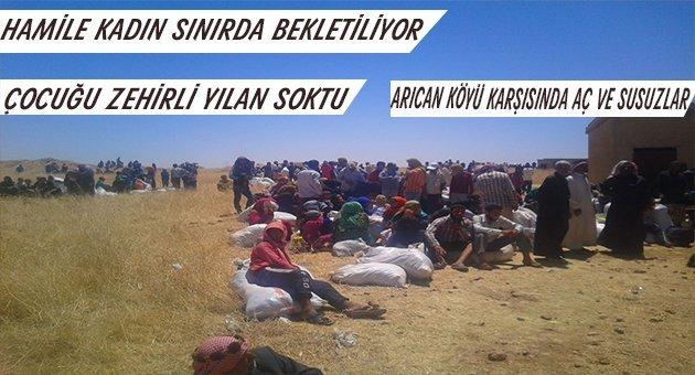 Türkmenler Akçakale Sınırında Ölüme Terkedildi