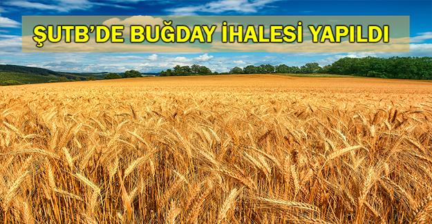 Buğday 1,54 Liradan İşlem Gördü