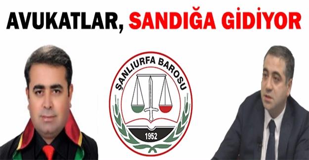 Şanlıurfa Barosu'nda Seçim Heyecanı