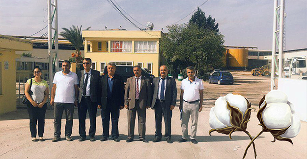 Urfa'da Pamuğun Kalitesi Artıyor