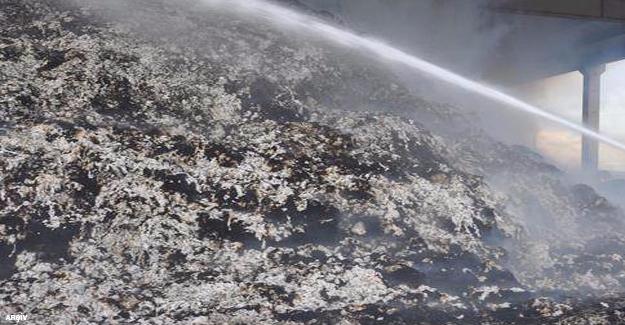 Viranşehir'de Tonlarca Pamuk Yandı