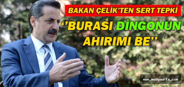 Bakan Çelik Konya'da Konuştu