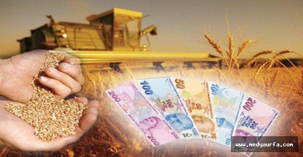 Tarımsal desteğe 22 milyar lira ayrıldı