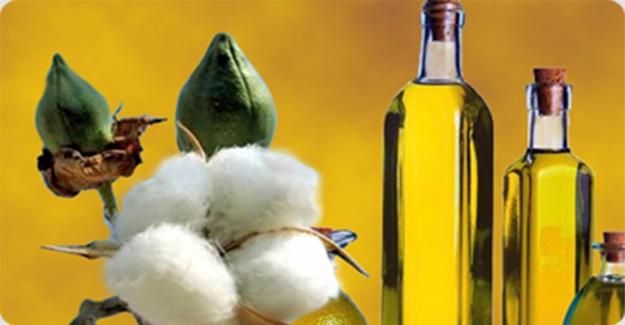 Şanlıurfa'da pamuk yağı 3,44 liradan satıldı