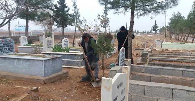 Suruç'ta Mezarlıklar İlk Kez Temizlendi