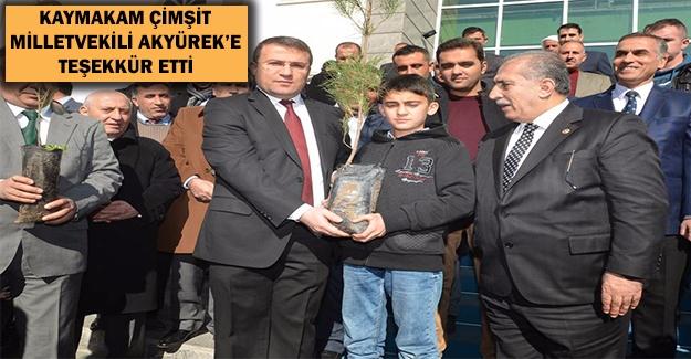 Viranşehir'de 63 Bin Öğrenciye 63 Bin Fidan Kampanyası