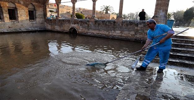 Balıklıgöl'de Temizlik Çalışmaları Sürüyor