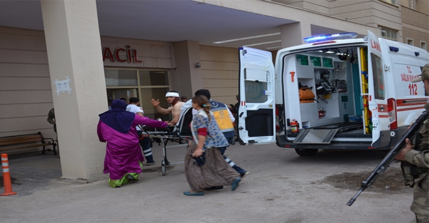 Siverek'te Koyun Otlatma Kavgası: 4 Yaralı