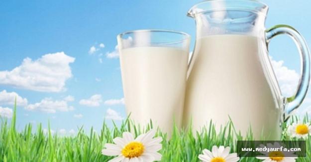 Ramazan'da Tok Kalmak İçin Süt Tüketin