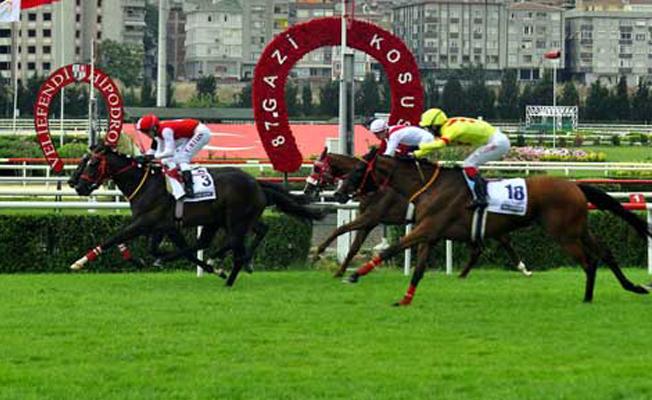 Türk At Yarışçılığının Derbisi: Gazi Koşusu
