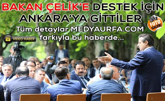 Bakan Çelik Şanlıurfa Heyetini Ağırladı