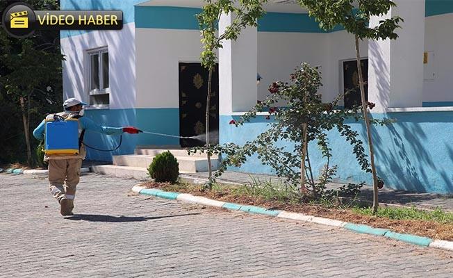 Haliliye'de Kırsal Mahallelerde İlaçlama Çalışması Sürüyor