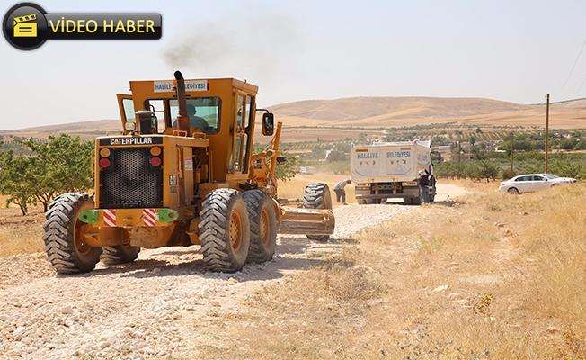 Haliliye Kırsalında Yol Çalışması Sürüyor