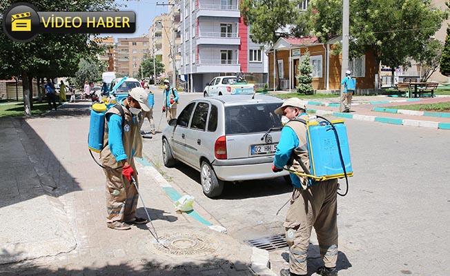 Haliliye'de İlaçlama Çalışmaları Sürüyor