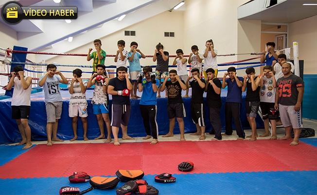 Urfalı Gençlerden Kick Boks'a Yoğun İlgi