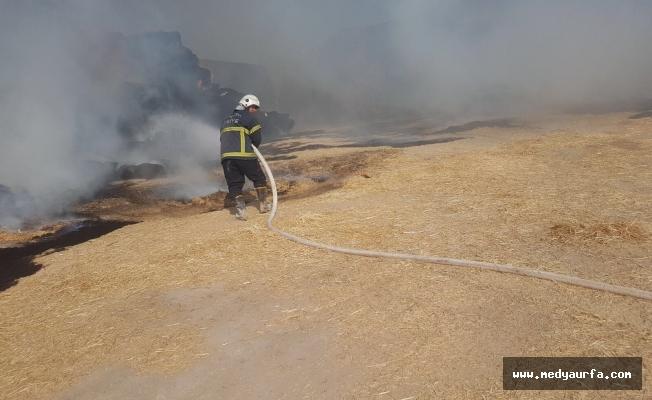 Eyyübiye'de tonlarca saman kül oldu