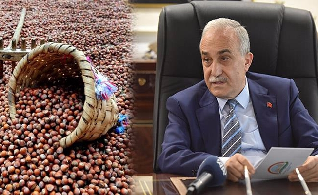 Fakıbaba'dan Önemli Fındık Açıklaması
