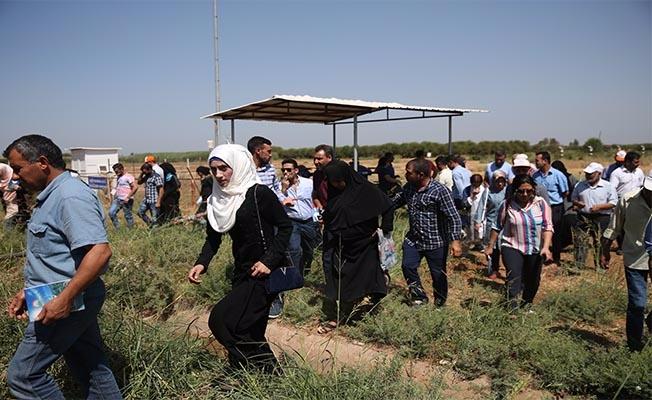 Suriyeli sığınmacılar modern tarımı öğreniyor