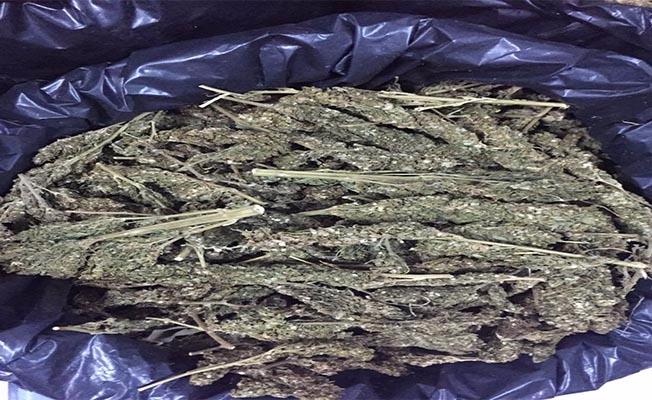 Şanlıurfa'da 243 kilogram esrar ele geçirildi