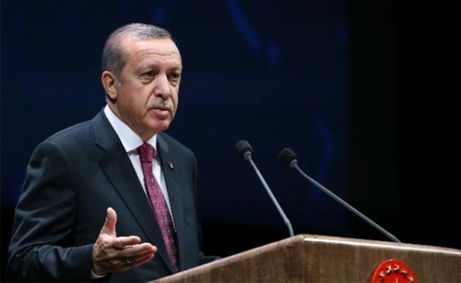 Erdoğan Vali Erin'i kabül etti