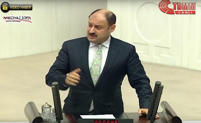 Gülpınar, TBMM'de AK Parti grubu adına konuştu