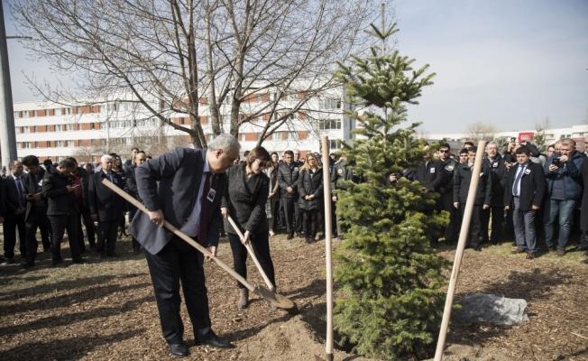 Şehit Karaman'ın anısına ağaç dikildi