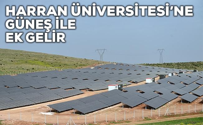 """Harran Üniversitesi """"güneş"""" ile kazanacak"""