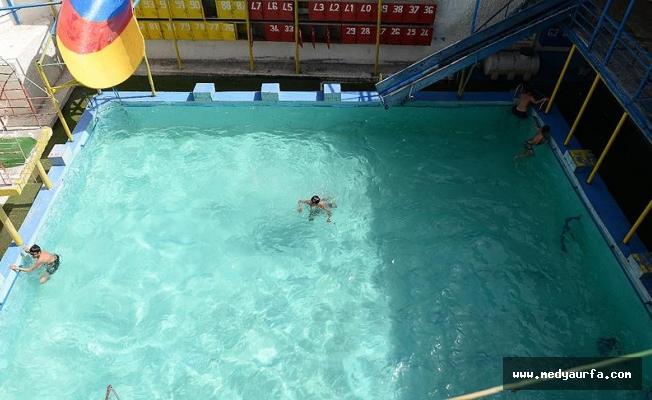 Bakkalda ilaç, bilardo salonunda havuz buldular