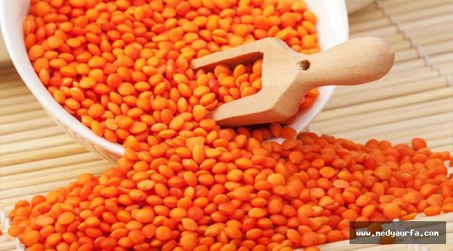 Kırmızı Mercimek 2-4,72 liradan satıldı