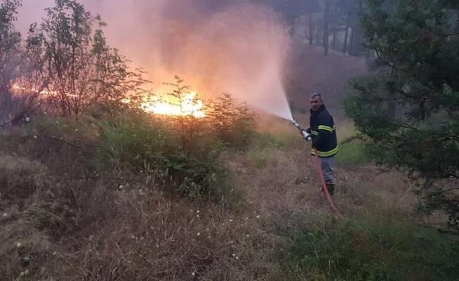 8 hektarlık orman yangını!