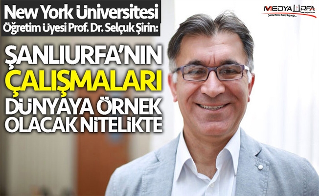 Prof. Dr. Şirin'den Urfa'ya mülteci övgüsü