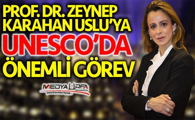 Zeynep Karahan Uslu'ya UNESCO'da önemli görev!