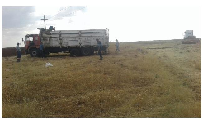 Siverek'te petrol boru hattında hırsızlık