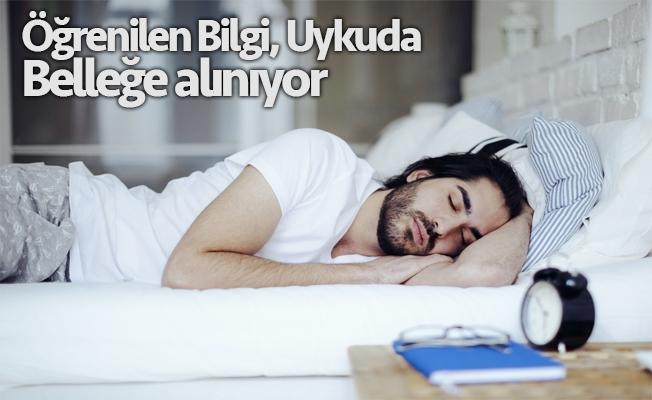 Uyku, beyni yeniden başlatıyor