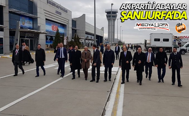 AK Parti'nin Urfa adaylarına coşkulu karşılama