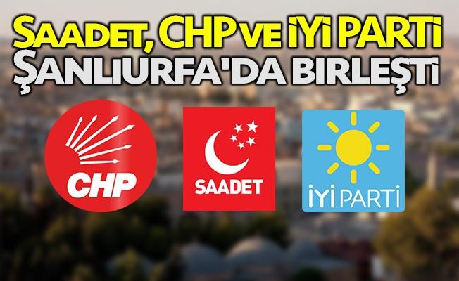 ''Üç parti Urfa için birleşti'' iddiası!
