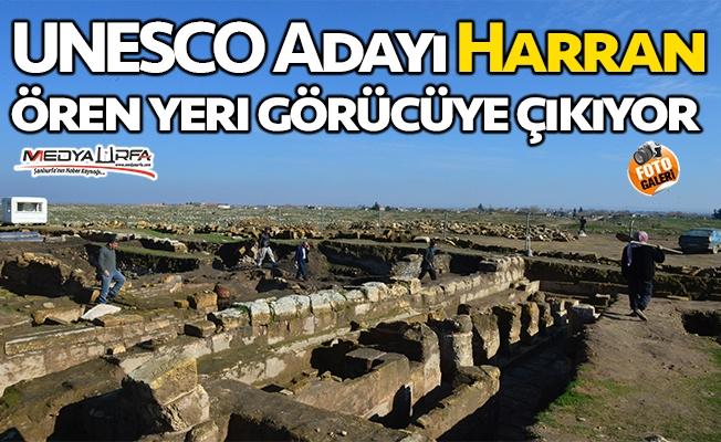 UNESCO adayı Harran ören yeri görücüye çıkıyor