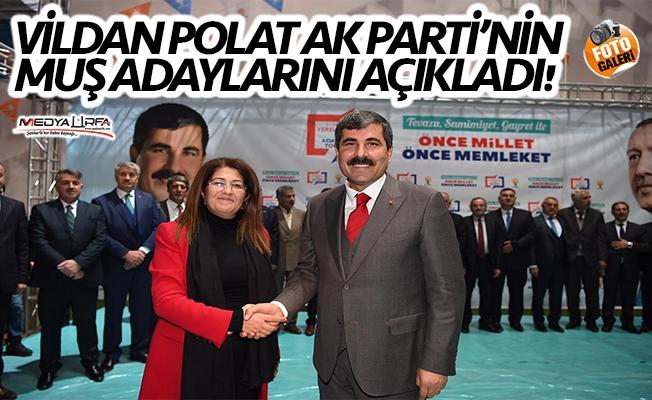 Vildan Polat AK Parti'nin Muş adaylarını açıkladı!