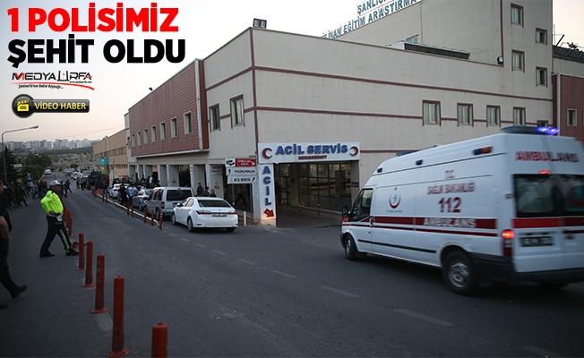 Halfeti'de terör operasyonu:1 şehit, 2 yaralı