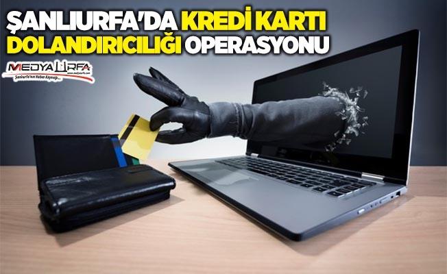 Şanlıurfa'da kredi kartı dolandırıcılığı operasyonu