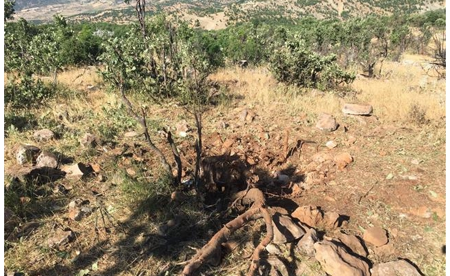Diyarbakır'da patlayıcı düzeneği ele geçirildi