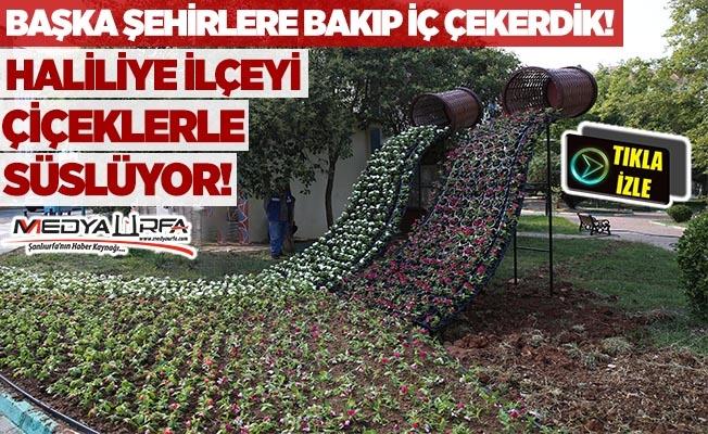 Haliliye Belediyesi ilçeyi çiçeklerle süslüyor