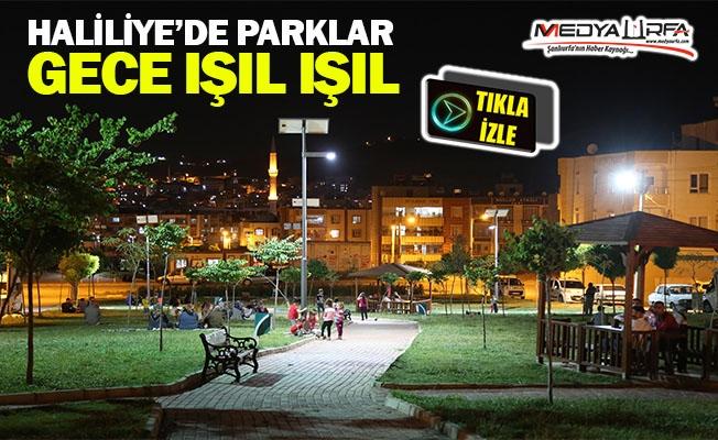 Haliliye'de parklar gece ışıl ışıl