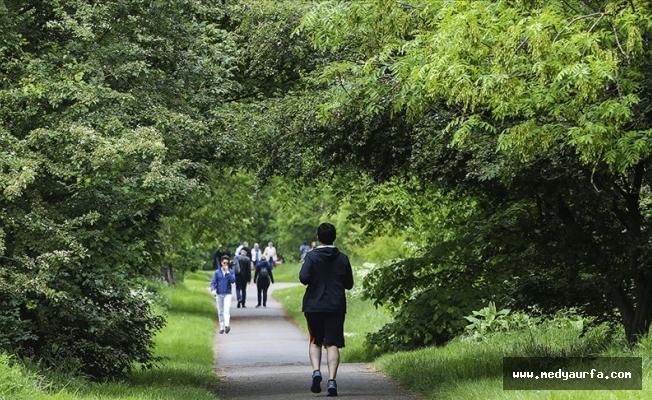 'Sağlıklı uyku için açık havada yürüyün'