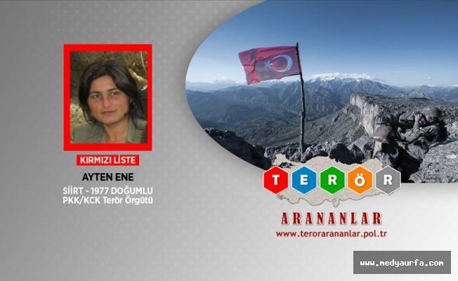 Tunceli'de iki terörist etkisiz hale getirildi