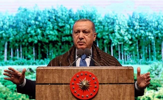 Erdoğan'dan yeşil Türkiye için destek çağrısı