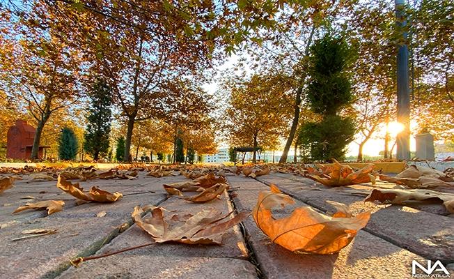 Şanlıurfa'da bitmeyen sonbahar
