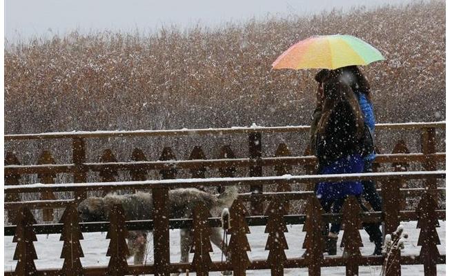 Abant'taki yaylalara mevsimin ilk karı düştü